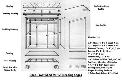 Building An Outdoor Aviary For Parrots Google Search Parrotcagediy With Images Bird House Kits Floor Framing Aviary