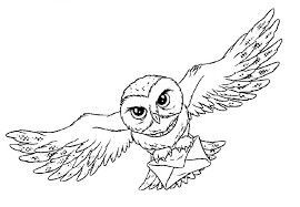 Notitle Harry Potter Coloring Pages Harry Potter Colors Harry Potter Owl