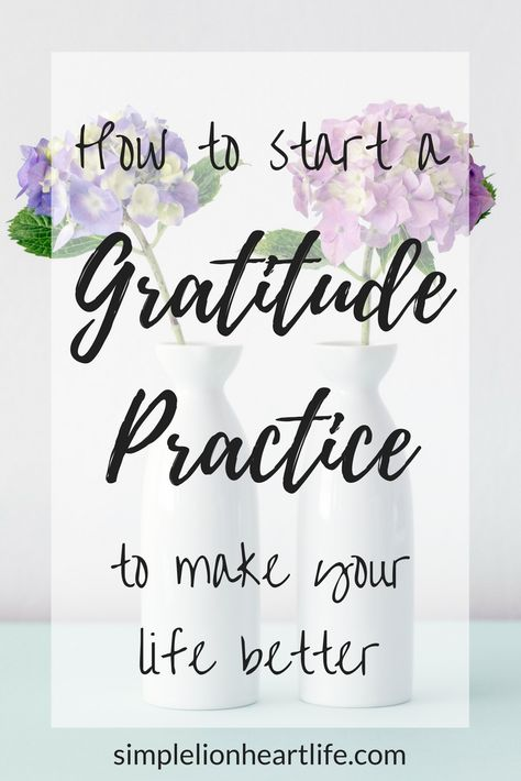 How to Start a Gratitude Practice to Make your Life Better - Simple Lionheart Life gratitudequotes #attitudeofgratitude #gratitudejar #gratitudejournals #positiveliving #practicegratitude #willpower #mindfulnesstechniques #thankful