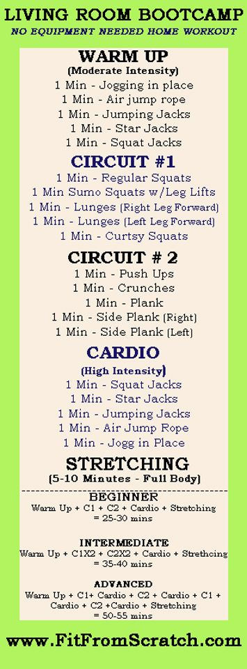 Fit From Scratch: Living Room Boot camp Workout - completed advanced level 3/1/13 with 40s work/10s rest, 1min rest between circuits. Pretty sweaty! Replaced one C2 with an arms workout.