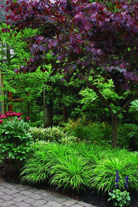 Erstellen Eines Modernen Bauerngartens Modernlandscapedesign Bauerngarten Moderner Garten Garten Landschaftsbau