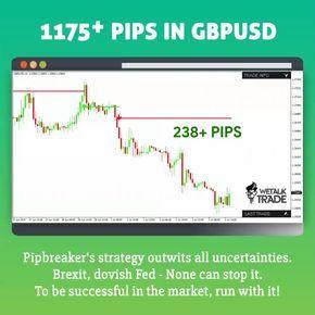 Best Indicator For Mt4 Pipbreaker Trading Marketing Success