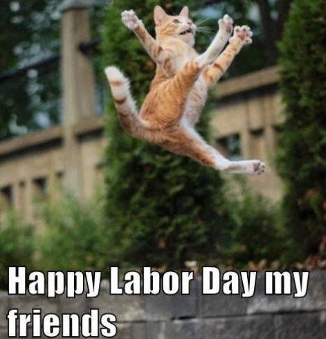 Labor Day Memes 2020 Memes Labor Day Meme Funny Jokes