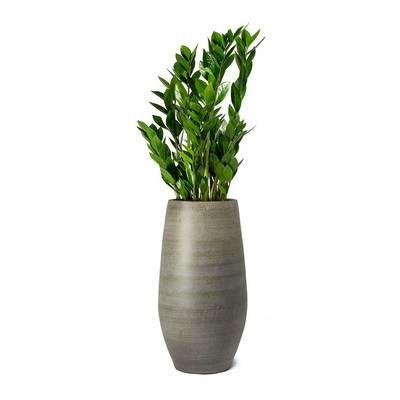 Esra Tall Plant Vase Mystic Grey Plant Vase Tall Plants Plants