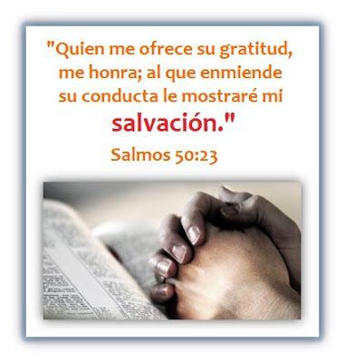 Oraciones Center 18 Versículos De Agradecimiento Para Orar Y Adorar Versiculos De Agradecimiento Oracion Para Dar Gracias Agradecimiento A Dios