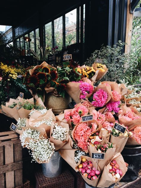 Pretty flowers at the flower market. My Flower, Fresh Flowers, Beautiful Flowers, Cactus Flower, Exotic Flowers, Purple Flowers, Beautiful Pictures, Flores Wallpaper, Floral Wallpaper Phone