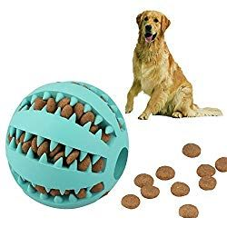 Five Great Puzzle Toys For Dogs Best Dog Toys Durable Dog Toys