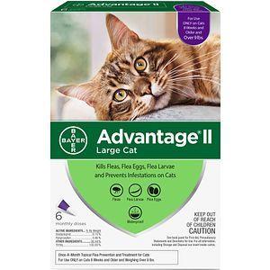 Advantage Ii Flea Control For Large Cats Over 9 Lbs 6 Month Flea Prevention For Cats Flea Medicine For Cats Flea Meds For Cats