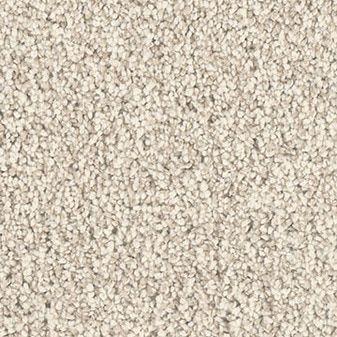 Dream Weaver Extraordinary Ii Carpet Samples Carpet Types Of Carpet
