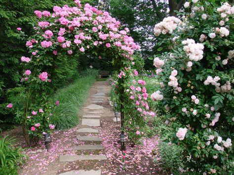 How to Hang Garden Trellis? : Home Designs, Home Interior Designs ...