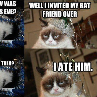 Happy New Year 2018 Memes Grumpy Cat Grumpy Cat Meme Cat Party