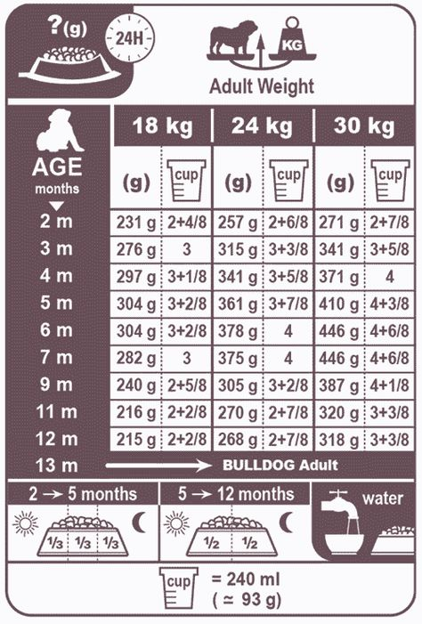 77 English Bulldog Weight Chart Kg In 2020 Weight Charts