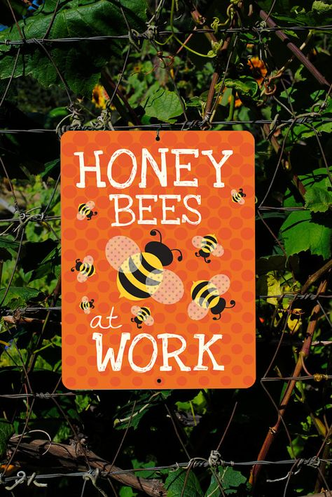 Honey+Bees+At+Work+Tangerine+9+X+12+by+BainbridgeFarmGoods+on+Etsy,+$25.95
