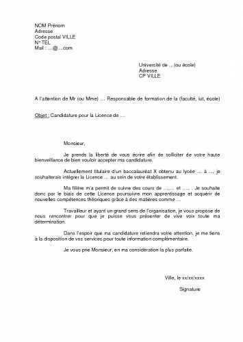 Fine Lettre De Motivation Licence Pro Informatique That You Must