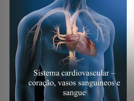 Sistema Cardiovascular Coracao Vasos Sanguineos E Sangue
