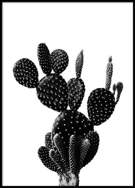 Black cactus one Poster in the group Posters & Prints / Sizes / 21x30cm | 8,3x11,8 at Desenio AB (2429)