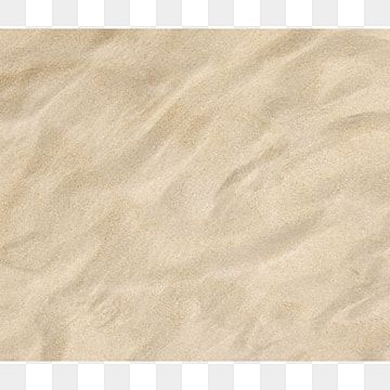 Beach Sand And Shells Background Gallery Yopriceville High Quality Images And Transparent Png Free Clipart Beach Sand Shells Sea Shells