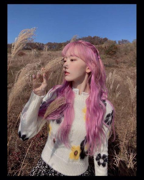 아이즈원 사쿠라 핑크머리 모음 — 스타들의★ 근황을 모아서