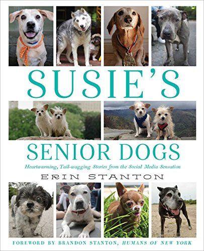 Ebook 7 Susie S Senior Dogs Pdf Download Google Drive Senior Dog Dog Books Elderly Dogs