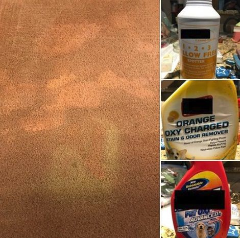 Permanent Discoloration This Is Why We Never Recommend Off The Shelf Pet Odor Stain Treatments It S How To Clean Carpet Mattress Cleaning Cleaning Upholstery