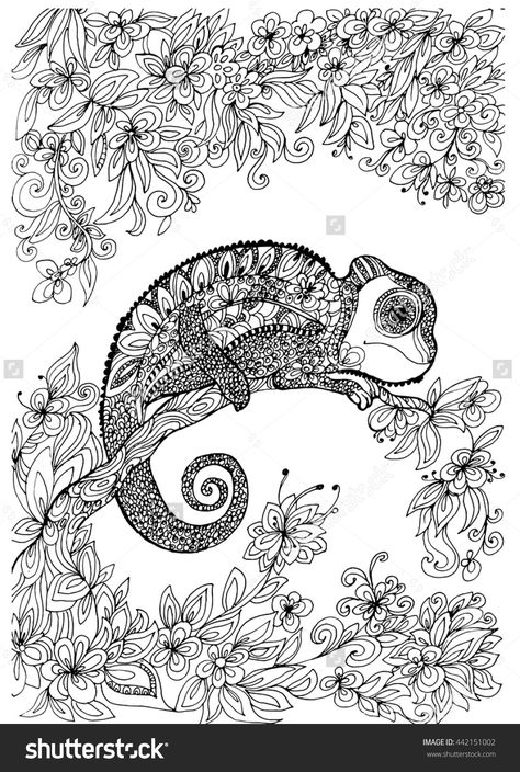 Pin On Animals Adult Colouring Zentangles