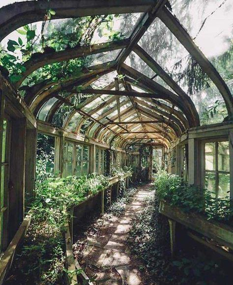 Overgrown Greenhouse If we could wave a wand, we'd want to restore these gorgeous abandoned houses right now. Exterior, Abandoned Places, Abandoned Houses, Abandoned Mansions, Abandoned Castles, Dream Garden, Future House, Garden Design, Beautiful Places