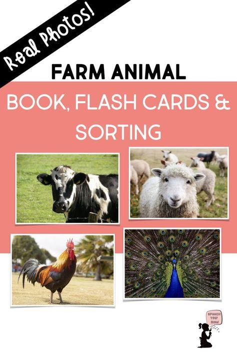 Farm Animal Book, Flash Cards, & Sorting | Speech Animals