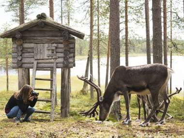 Lidl Reizen Zomer In Lapland Days Out And Vacation With Kids In