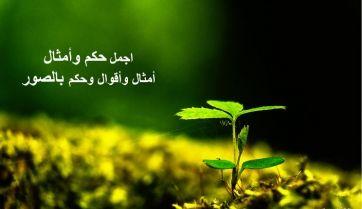 حكم وأمثثال بالصور مجموعة صور لحكم وأمثال ومقولات عن طريق الصور تبقى Islam Facts Movie Posters Poster