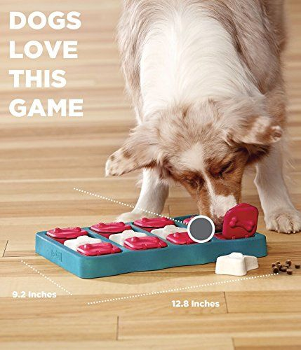 10 Best Puzzle Toys That Actually Help Bored Dogs Bored Dog