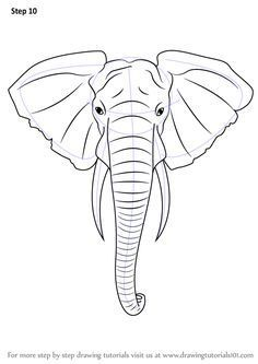 Step-by-step how to draw an elephant head. More
