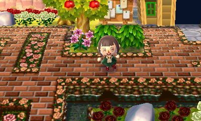 Beliebt Animal Crossing New Leaf Bodendesigns Sw68 Startupjobsfa