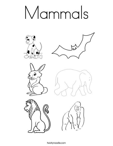 Mammals Coloring Page Twisty Noodle Mammals Coloring Pages