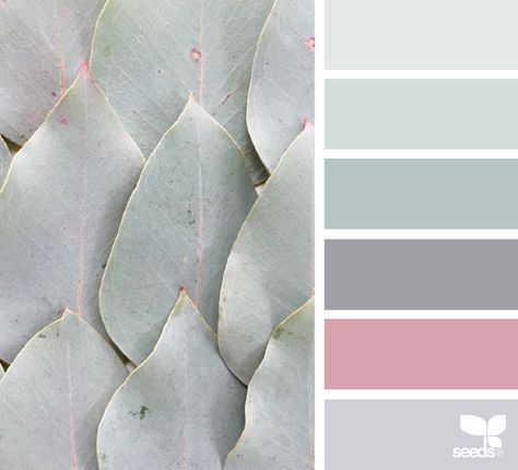 nature tones Silver - Old Rose -Silver Lavender - Dusty Eau de Nil