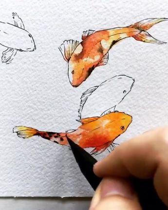 Koi Fish Tumblr Koi Art Watercolor Fish Fish Drawings