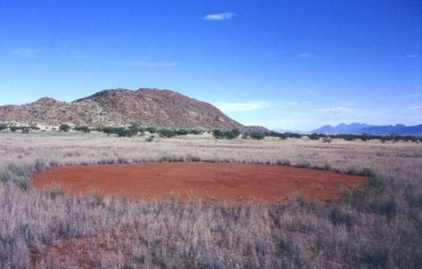 Dirt circle in Namibia