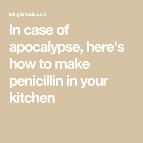 In Case Of Apocalypse Here S How To Make Penicillin In Your Kitchen In 2020 Penicillin How To Make Apocalypse