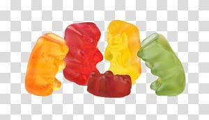 Five Gummy Bears Gummy Bear Chewing Gum Gummi Candy Jelly Babies Multicolor Cartoon Gum Transparent Background Png Gummy Bears Jelly Babies Gummy Bear Candy