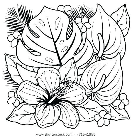 Flower Girl Coloring Book Hibiscus Flower Coloring Pages Hibiscus Flower Coloring Pages Flo Flores Para Colorir Desenhos Para Colorir Flores Desenhos Para Maes