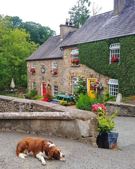 When I first visited Monaghan, Ireland, I didn't expect much. There are so many things to do in Monaghan. From jive lessons to rally driving. Cork Ireland, Dublin Ireland, Ireland Food, Ireland Vacation, Ireland Travel, Clare Island, Ireland Homes, Cottages In Ireland, Ireland Castles