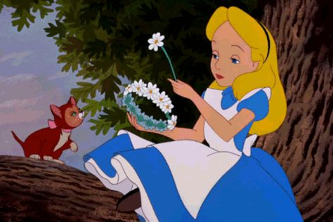 c2e22fc5ec6 Can You Ace This  Alice in Wonderland  Trivia  - It s time to fall down the rabbit  hole! - Quiz