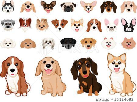 いろいろな犬種のイヌ セット かわいい 動物 イラスト イヌ 可愛すぎる動物