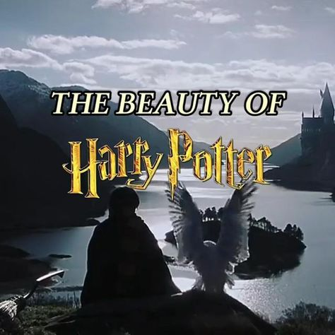 The Beuty Of Harry Potter⚡️