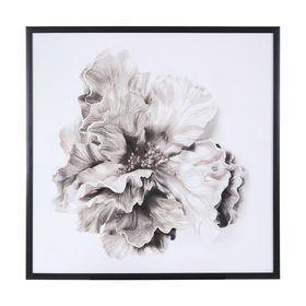 Framed Flower Print Flower Frame Flower Prints Kmart Decor