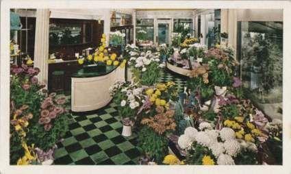 Flowers Shop Interior Dreams 50 Trendy Ideas Hotel Flowers Flower Shop Interiors Flower Shop