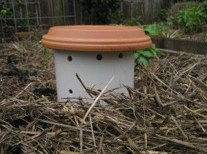 Garden Earthworm Tower:  Happy earthworms=Happy garden. Fed w/kitchen compost. B.I'Me