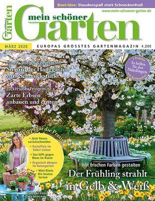 Reihenhausgarten Gestalten Wissen Tipps Und Tricks Mein Schoner Garten In 2020 Garten Pflanzen Terrassengarten