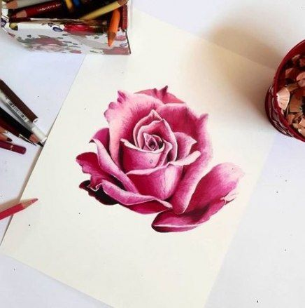 44 Trendy Flowers Art Gcse Colored Pencils Roses Drawing Color Pencil Art Colored Pencil Artwork