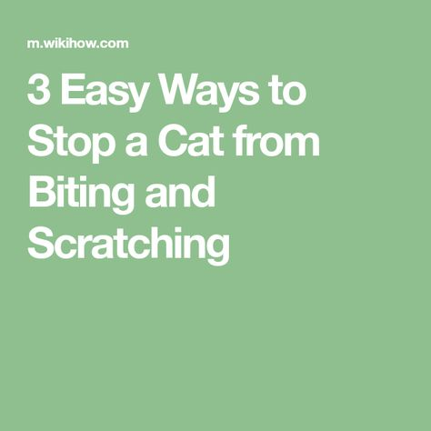 How To Stop A Cat From Biting And Scratching With Pictures Cats Cat Training Scratching