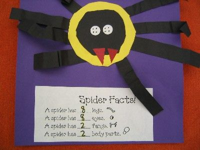 Spiders.